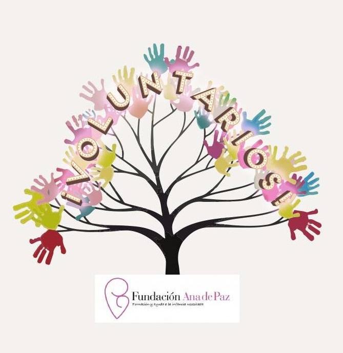 voluntarios-fundacion