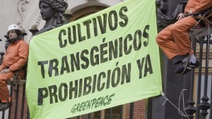 Activistas-Greenpeace-campanas-transgenicos_EDIIMA20160701_0073_4